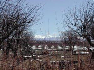 La Plata Mountains from the Great Sage Plain