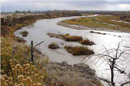 Colorado Springs Denies Fountain Creek Pollution In First. It Business Case Example Order Checks On Line. Hvac Certification Schools Email Disney World. Nj Auto Insurance Quote Lynns Audio And Video. Office Phone Systems With Wireless Headset. Metro State College Of Denver. Cheap Car Insurance For Teenagers. Can I Use My Debit Card As Credit. Knowledge Management Cycle Texas Jr Colleges