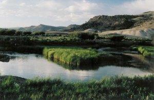 Saguache Creek