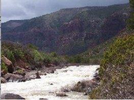 Dolores River near Bedrock