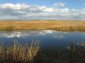 A picture named alamosanationalwildliferefuge.jpg