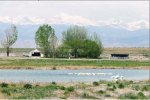 wetlandssouthplatte