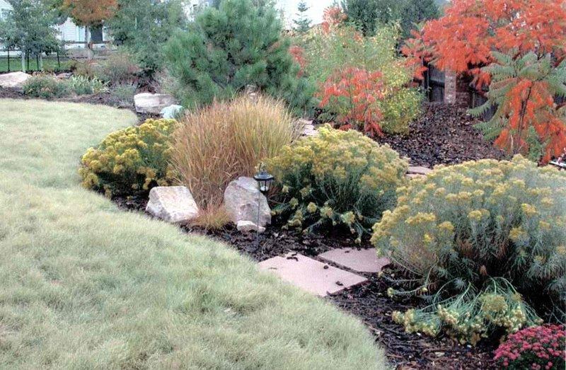 2014 colorado legislation state legislators hope to pass for Xeriscape garden design ideas