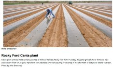 Arkansas Valley cantaloupe planting April 2012 photo via The Pueblo Chieftain