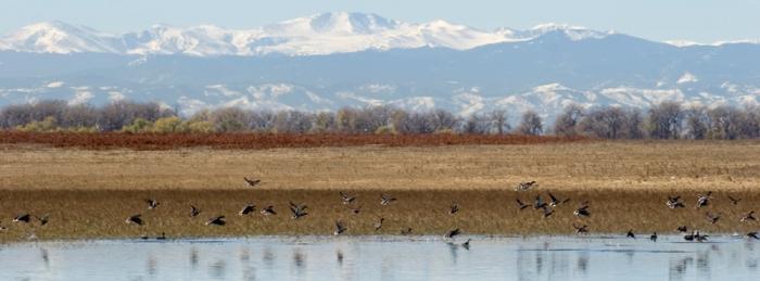 Barr Lake State Park photo via Colorado Parks and Wildlife.