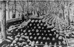 Rocky Ford Melon Day 1893 via the Colorado Historical Society