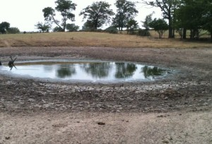 Recharge pond