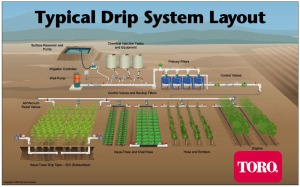 Typical Drip Irrigation System via Toro