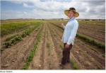 Arkansas Valley organic farmer Dan Hobbs photo via the Pueblo Chieftain