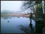 Hunter if fog at Prewitt Reservoir via Colorado Open Lands