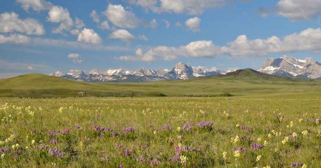 The Nature Conservancy has been involved in protecting a million acres in Montana, including lands along the Rocky Mountain Front such as the Rappold ranch near Dupuyer, where conservation easements restrict development. / Courtesy photo/Dave Hanna
