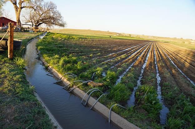 floodirrigationarkansasrivervalleygreghobbs2014