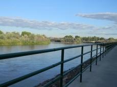 Colorado River Trail near Fruita September 2014