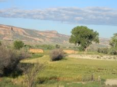 Hay meadows near Fruita September 2014