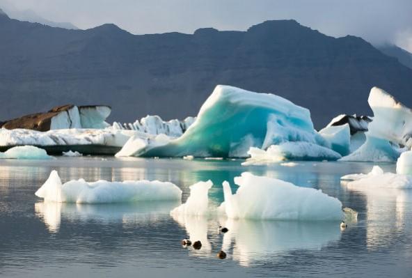 arcticoceanecorazzi