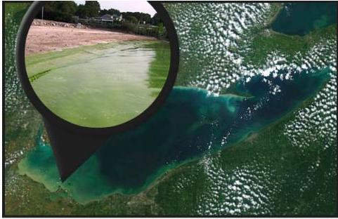 Lake Erie algae bloom via NOAA