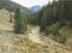 Cement Creek remains lined with orange sediment after the Gold King Mine spill. The Environmental Protection Agency accidentally triggered the release of orange wastewater laced with heavy metals into Cement Creek on Aug. 5. The creek flows into the Animas River at Silverton, and eventually crosses into New Mexico and Utah