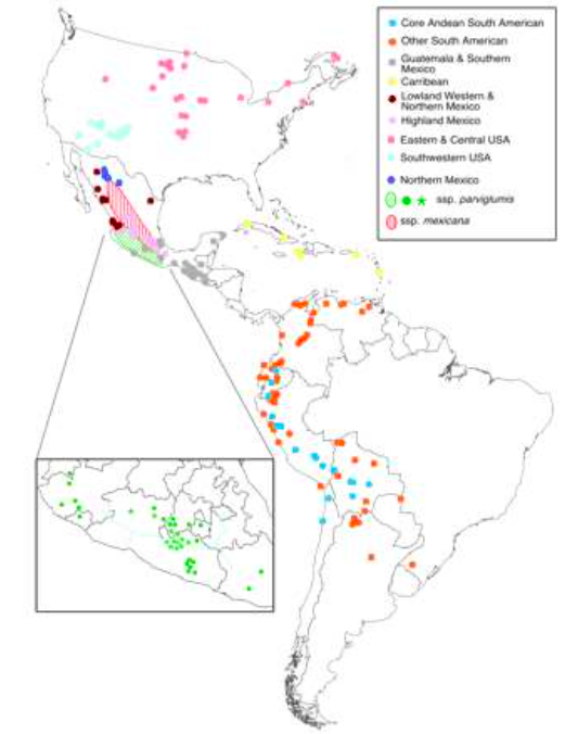 Fig. 5. Center of origin teocintle and maize land race populations. The light blue dots include accessions from northern New Mexico and the San Luis Valley in Colorado. Source: Matsuoka, et al (2002).