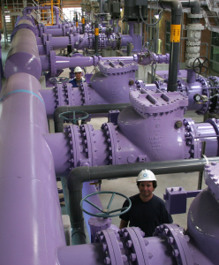 Purple, which has become the international symbol for recycled water, is used on valve boxes, manhole covers, newer sprinkler heads and even the pipes inside our Recycling Plant via Denver Water.