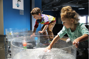 Kids play in water vortices. Exhibit features also include a rainstorm and thunder-maker; water tower; waterwheel; geysers; a larger than-life toilet; and river system.