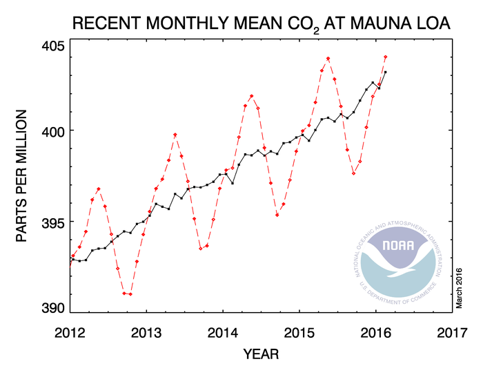 The graph shows recent monthly mean carbon dioxide measured at Mauna Loa Observatory, Hawaii.