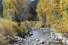 Gore Creek is healthy as it emerges from the Eagles Nest Wilderness Area, but has problems soon after, via The Mountain Town News. All photos by Jack Affleck.