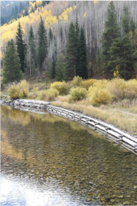 This revegetation project uses log cribbing to hold the bank of Gore Creek in place while the plants get established. The logs will slowly decay. Photo credit Jack Affleck via The Mountain Town News.