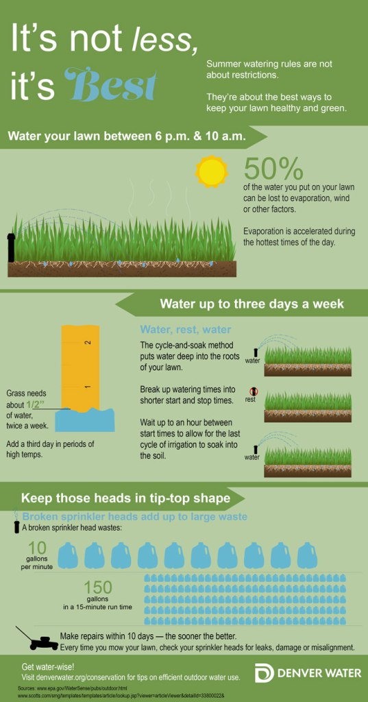watering-rules-infographic_FINALweb