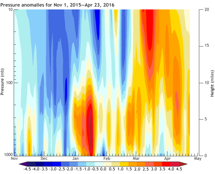 65-90°N geopotential height anomalies (standardized by the JFM mean/standard deviation) for Nov 1 2015 - April 12 2016.  Geopotential height is the height above the surface at which you find a given level of air pressure. A positive anomaly means the pressure is unusually high for a given altitude, which is generally linked to warmer than usual conditions. Negative anomalies mean lower pressure and colder air. In early winter, the vortex was anomalously strong (blue shading); in Jan/Feb, the stratosphere was largely decoupled from the troposphere; and in late winter, the vortex was anomalously weak (red shading) following a final major SSW on March 5.