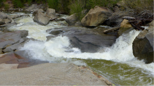 "Roaring Fork River, Grottos, on Monday morning June 13, 2016, looking downstream, with diversions into the Twin Lakes Tunnel at over 600 cfs. While impressive at this level, the whitewater frenzy that resulted after the tunnels were closed was far more intense. Photo Brent Gardner-Smith <a href=""http://aspenjournalism.org"".Aspen Journalism."