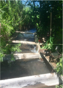 On July 7th, we closed our headgate that takes water from the Little Cimarron for irrigation. The water in the above photo will now bypass our headgate and return to the river. Photo via the Colorado Water Trust.