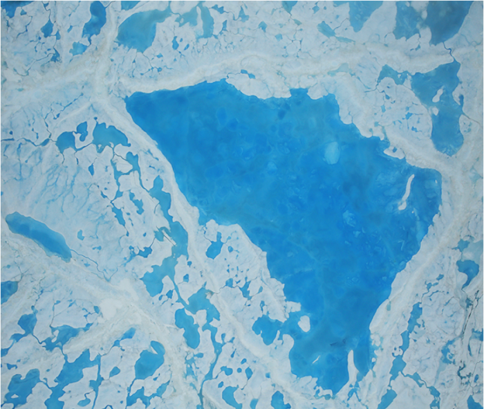 Another pool of melt water over sea ice, as seen from an Operation IceBridge flight over the Beaufort Sea on July 14, 2016. Scientists have found that formation of melt ponds early in the summer reduces the ability of sea ice to reflect solar radiation, which leads to more melt. Credit: NASA/Operation IceBridge.