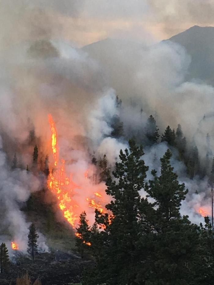 The Lodgepole fire north of Twin lakes finds plenty of fuel with the areas grass, sagebrush and lodgepole pines. Photo: Lake County Office of Emergency Management.