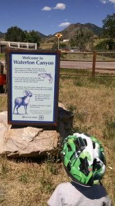 Read and follow the signs, like the one pictured here, throughout Waterton Canyon to learn how to safely interact with the wildlife.