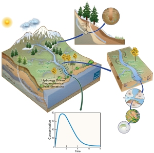 """The Watershed Function SFA takes a """"system-of-systems"""" approach, as depicted in this illustration, to quantify how fine-scale processes occurring in different watershed subsystems aggregate into downgradient export of water, nitrogen, carbon, and metals. (Credit: D. Swantek)"""