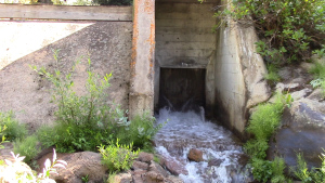 In early August, Denver Water released an additional 40-million gallons of water from its diversions into Ranch Creek over a 10-day span.