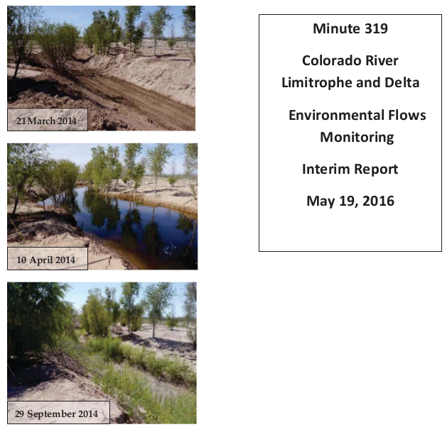 "The ""Minute 319 Colorado River Limitrophe and Delta Environmental Flows Monitoring Interim Report,"" released by the International Boundary and Water Commission, documents the effects of the environmental flows in the delta from the initial release of a pulse of water from March 23 through May 18, 2014, plus subsequent supplemental deliveries of water through December 2015."