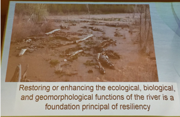 Stream resiliency. Slide via Chris Sturm, South Platte Forum, October 26, 2016.