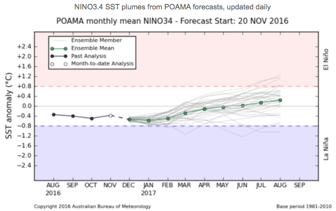 All models indicate warming of the central Pacific is likely over the coming months.
