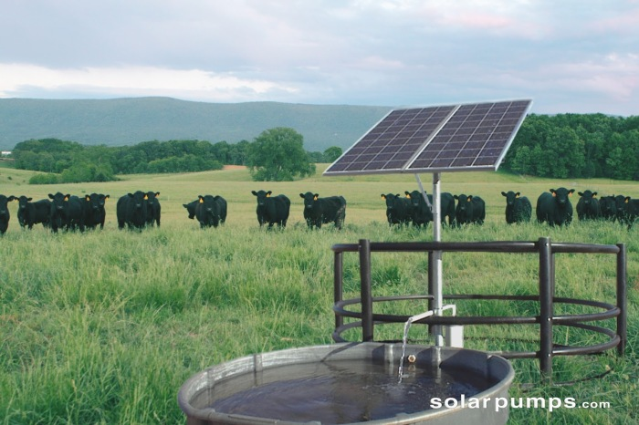 Photo via SolarPumps.com.