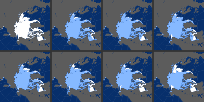 Years with sea ice above and below the median are displayed in the grid view. The eight panels show the November extent roughly every five years since 1978, when satellites started monitoring sea ice. Every November is different, as freeze-up is influenced by factors such as water temperature, air temperature, and wind patterns. All three factors played a role in the November 2016 record low.