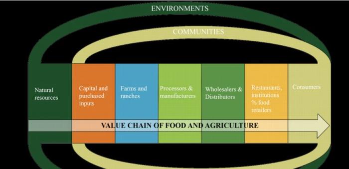 foodagriculturevaluechaincsu022017