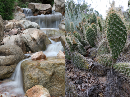Denver Botanic Gardens via the One World One Water Center at Metropolitan State University at Denver.