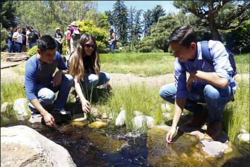 Denver Botanic Gardens via Metropolitan State University at Denver