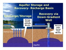 Figure 2: Recharge basin with down-gradient recovery well.