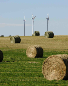 Aspen gets more than half of its electricity from wind turbines just north of I-80 in the Nebraska panhandle. Photo credit The Mountain Town News.