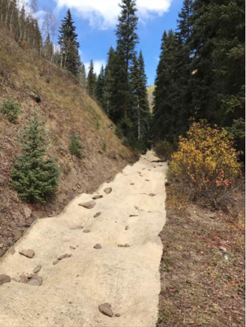 Volunteers spread a native seed mix and applied biodegradable erosion control fabric along a section of a closed forest service road that runs adjacent to Lime Creek. In total, over three miles of a closed forest service road were decommissioned and rehabilitated through revegetation and subsequent erosion control. This effort will help protect cutthroat trout spawning habitat in Lime Creek.