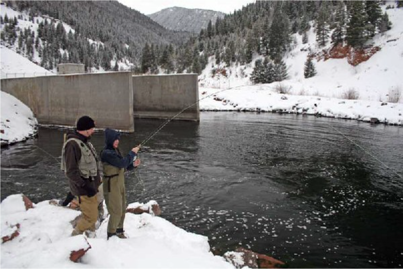 Agencies Clarify Status Of Famed Toilet Bowl Trout