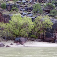 A small beach on the Green River in Whirlpool Canyon on a rainy day in April, 2018.