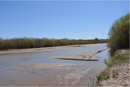 The drying riverbed of the Middle Rio Grande near the Bosque del Apache National Wildlife Refuge on April 4, 2018. Photo credit: USBR